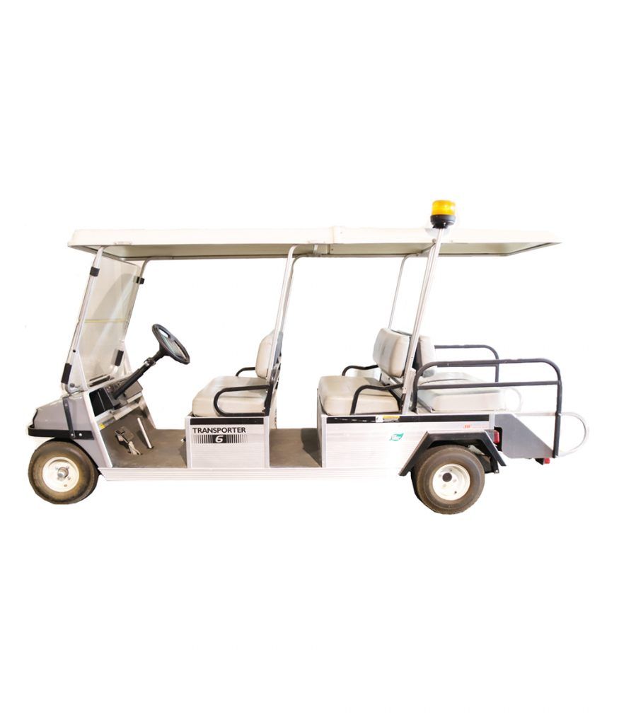 Limo Cart 6-Person Electric