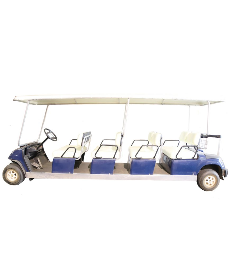 Limo Cart 8-Person Gas